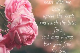 My Garden Heart