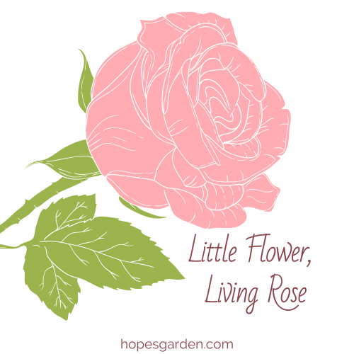 Little Flower, Living Rose