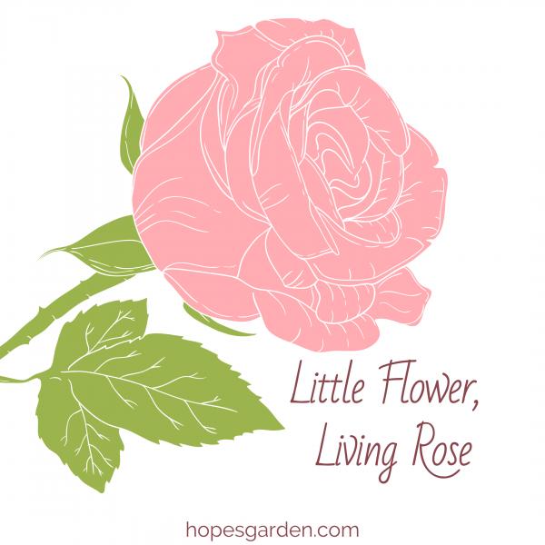Little Flower, Living Rose