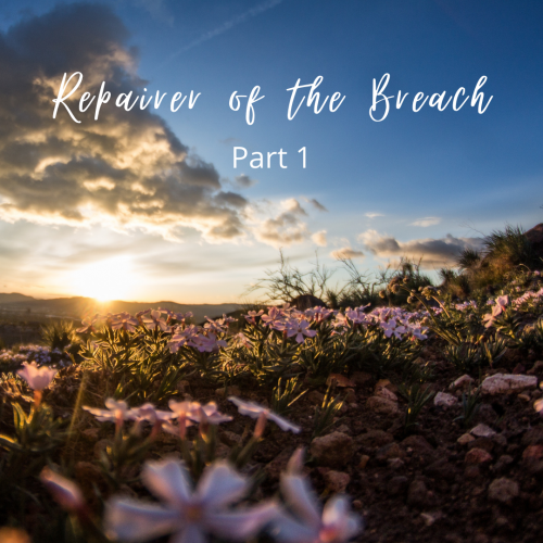 Repairer of the Breach, Part 1
